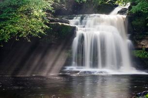 Westburton Waterfall, Westburton, Yorkshire Dales, Yorkshireの写真素材 [FYI03772301]
