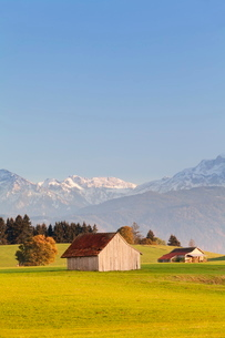 Cottage in Prealps landscape, Fussen, Ostallgau, Allgau, Allgau Alps, Bavariaの写真素材 [FYI03772367]