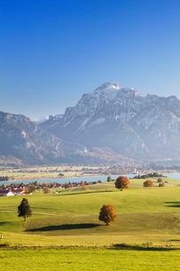 Prealps landscape and Forggensee Lake at sunset, Fussen, Ostallgau, Allgau, Allgau Alps, Bavariaの写真素材 [FYI03772373]