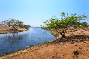 Tranquil waters of Khor Rori (Rouri), Land of Frankincense , near Salalah, Dhofar Region, Oman, Middの写真素材 [FYI03772587]