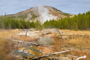 Midway Geyser Basin thermal activity from the Fairy Creek Trail, Yellowstone National Parkの写真素材 [FYI03772687]