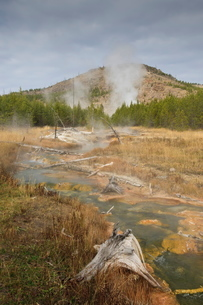 Midway Geyser Basin thermal activity from the Fairy Creek Trail, Yellowstone National Parkの写真素材 [FYI03772693]
