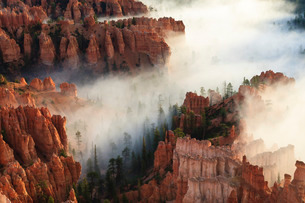 Pinnacles and hoodoos with fog extending into clouds of a partial temperature inversion, Bryce Canyoの写真素材 [FYI03772827]