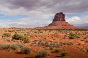 Mitten from the desert floor, late afternoon, Monument Valley Navajo Tribal Park, Utah Arizona bordeの写真素材 [FYI03772830]