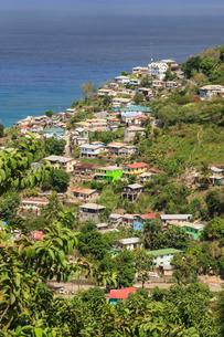 Hillside village by the sea, St. Lucia, Windward Islands, Caribbeanの写真素材 [FYI03772834]