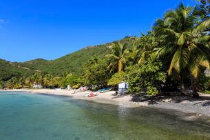 Clear water, beach, boats and palms, Great Harbour, Jost Van Dyke, British Virgin Islands, Caribbeanの写真素材 [FYI03772853]
