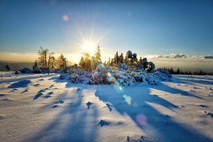Winter landscape, an HDR image with deep snow and sun, captured on Schliffkopf mountain in Northernの写真素材 [FYI03772956]