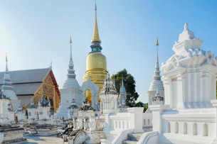 Chedis (stupas) at the temple of Wat Suan Dok, Chiang Mai, Thailand, Southeast Asiaの写真素材 [FYI03772998]
