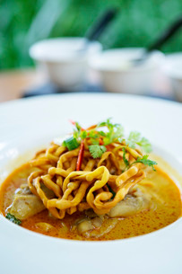 Crispy noodles and Thai curry, Chiang Mai, Thailand, Southeast Asiaの写真素材 [FYI03773000]