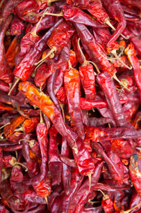 Chilli peppers in the market, Monywa, Sagaing, Myanmar, Southeast Asiaの写真素材 [FYI03773001]