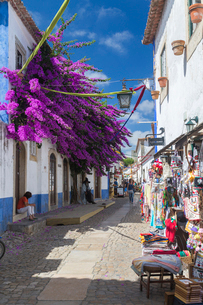 Tourists and shops in the typical alleys of the ancient fortified village of Obidos, Oeste Leiria Diの写真素材 [FYI03773103]
