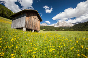 A typical mountain hut in the Tires Valley, by the Catinaccio Group and Lake Carezza in the Dolomiteの写真素材 [FYI03773165]