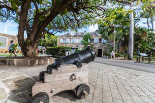 Small cannon in the courtyard in front of James Fort, built by the King of England to control the Caの写真素材 [FYI03773277]