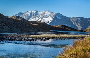 Blooming of eriofori (cotton grass), Levanne mountains. Gran Paradiso National Park, Alpi Graie (Graの写真素材 [FYI03773309]
