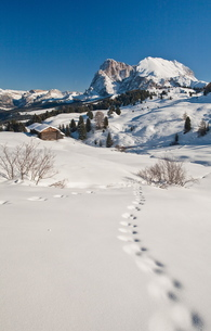Snow shoe hiking is a great way of exploring the sunny Seiser Alm hiking paradise at Europe's largesの写真素材 [FYI03773335]