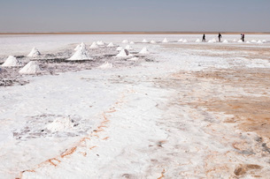 Salt flats near Shannah, Oman, Middle Eastの写真素材 [FYI03773482]