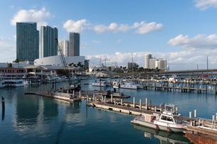 Bayside Marina, Downtown, Miami, Florida'の写真素材 [FYI03773607]