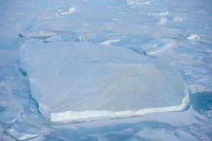 Iceberg and pack ice seen on heli flight from Russian icebreaker, Kapitan Khlebnikov, Weddell Sea, Aの写真素材 [FYI03773843]