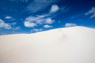 Little Sahara, Kangaroo Island, South Australiaの写真素材 [FYI03773993]