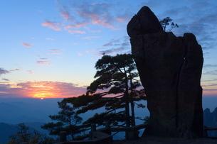 Silhouette of pine tree, White Cloud scenic area, Huang Shan (Mount Huangshan) (Yellow Mountain), Anの写真素材 [FYI03774094]
