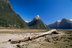 Milford Sound and Mitre Peak, South Island, New Zealandの写真素材 [FYI03774169]