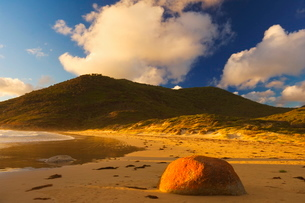 Whisky Bay, Wilsons Promontory National Park, Victoriaの写真素材 [FYI03774190]