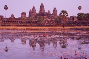 Angkor Wat, Angkor, Siem Reap, Cambodia, Indochina, Southeast Asia Asiaの写真素材 [FYI03774266]