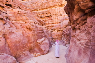 Bedouin man in the Colored Canyon, near Nuweiba, Sinaiの写真素材 [FYI03774334]