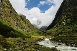 Modi Khola Valley, Annapurna Sanctuary, Annapurna Conservation Area, Gandaki, Western Region (Pashchの写真素材 [FYI03774479]