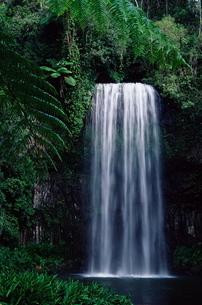 Mallaa Mallaa Falls, Queenslandの写真素材 [FYI03774692]