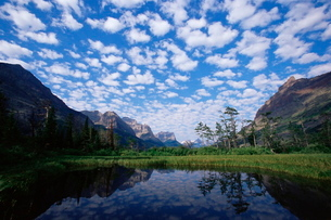 Pond next to St. Mary Lake, Glacier National Park, Montana'の写真素材 [FYI03774708]