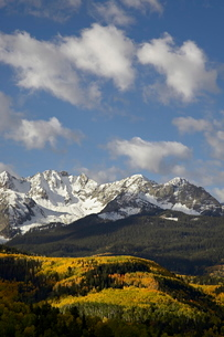 Sneffels Range with fall colors, near Ouray, Colorado'の写真素材 [FYI03774780]