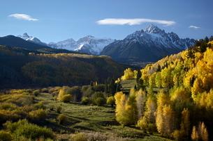 Sneffels Range with fall colors, near Dallas Divide, Colorado'の写真素材 [FYI03774858]