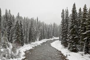 Malign River in winter, Jasper National Park, Albertaの写真素材 [FYI03775251]