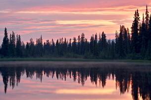 Sunset at an unnamed lake near Salmo Lake, Alaska Highway, Yukon Territoryの写真素材 [FYI03775500]