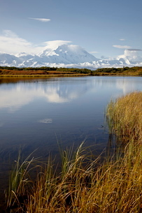 Mount McKinley (Mount Denali), Denali National Park and Preserve, Alaskaの写真素材 [FYI03775515]