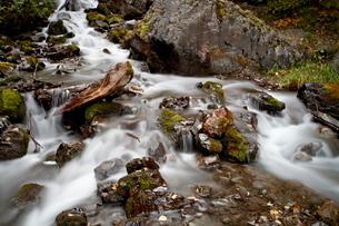Cascade at Pioneer Falls, Alaska'の写真素材 [FYI03775574]