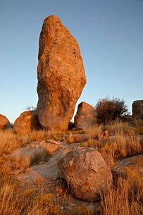 Boulder at sunset, City of Rocks State Park, New Mexico'の写真素材 [FYI03775584]