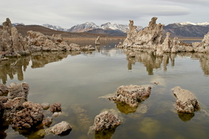 Tufa formations, Mono Lakeの写真素材 [FYI03775784]