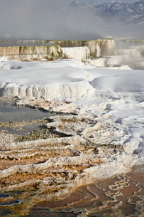Main Terrace Hot Spring with snow, Mammoth Hot Springs, Yellowstone National Parkの写真素材 [FYI03775839]