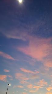 街灯と夕焼け空の写真素材 [FYI03775900]