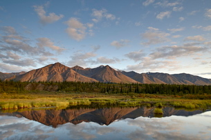 Mountains reflected in a pond along the Denali Highway, Alaska'の写真素材 [FYI03775913]