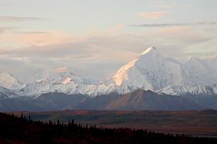 Mount Foraker in the fall, Denali National Park and Preserve, Alaska'の写真素材 [FYI03775915]