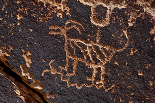 Bighorn sheep petroglyph, Petrified Forest National Park, Arizona'の写真素材 [FYI03775979]