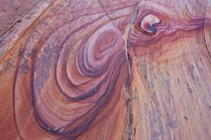 Purple loops in sandstone, Coyote Buttes Wilderness, Vermilion Cliffs National Monument, Arizona'の写真素材 [FYI03776419]