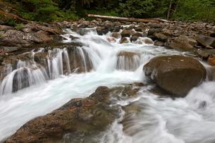 Cascades on Deception Creek, Mount Baker-Snoqualmie National Forest, Washington'の写真素材 [FYI03776883]