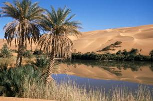 Oum el Ma (Umm el Ma) Lake, Mandara Valley, Southwest desert, Libyaの写真素材 [FYI03776894]