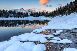 Woods and snowy peaks are reflected in Lake Palu at sunrise, Malenco Valley, Valtellina, Lombardyの写真素材 [FYI03777275]