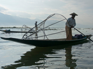 Fishermen cast their nets in Inle Lake, Shan Stateの写真素材 [FYI03777384]