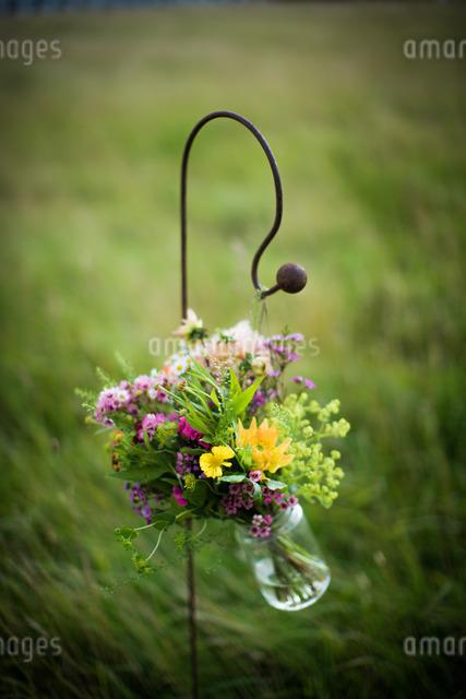 Bouquet in jarの写真素材 [FYI03777492]